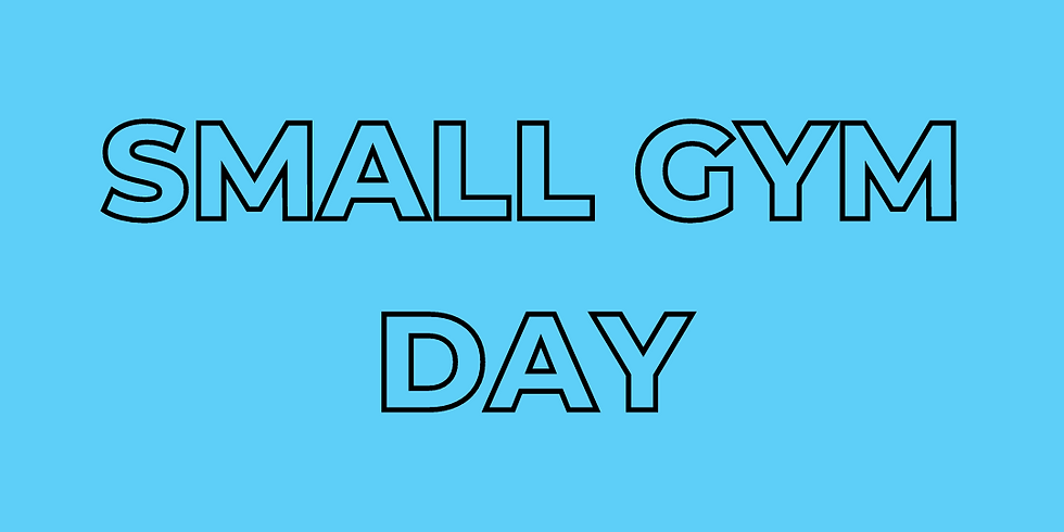 Small Gym Day