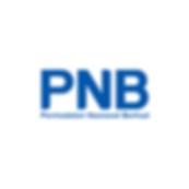 PNB Concept