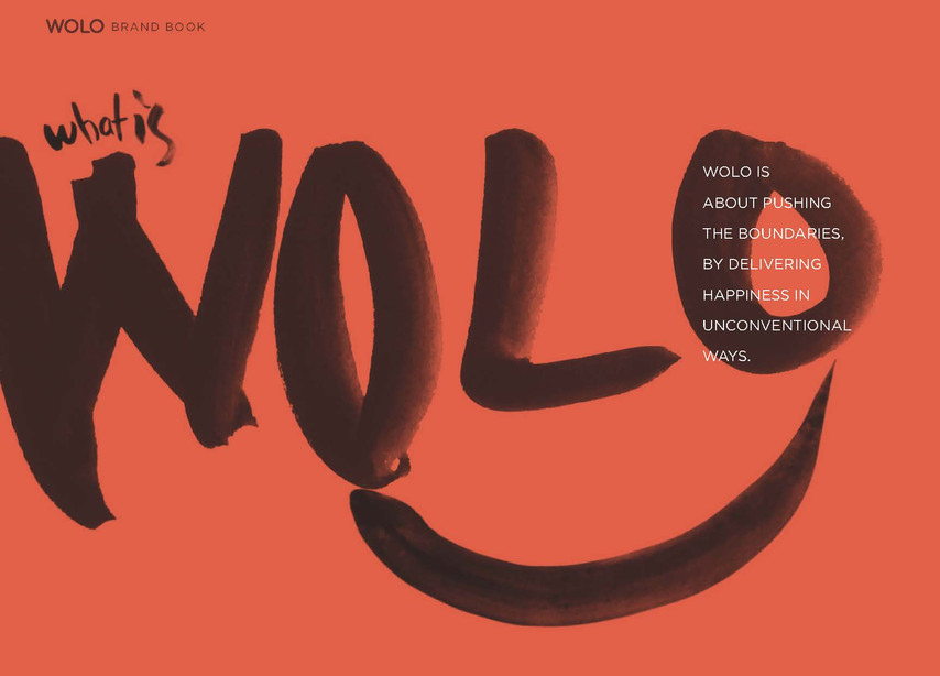 13- wolo brand Concept_Page_2.jpg