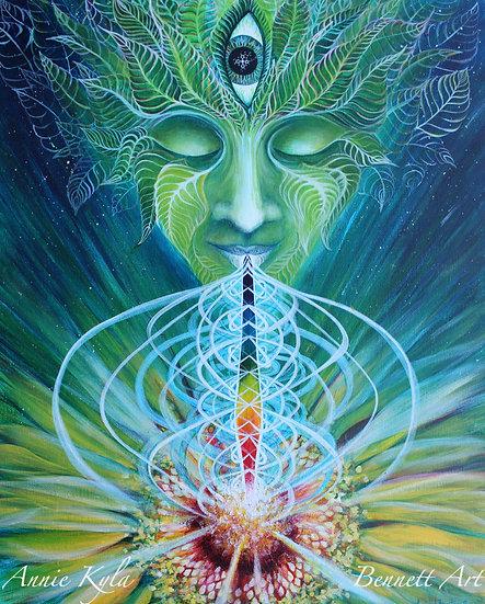 """Chlorophyll"" 16x20 Giclee Canvas Print by Annie Kyla Bee"