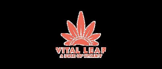 Vital-Leaf-Review.png