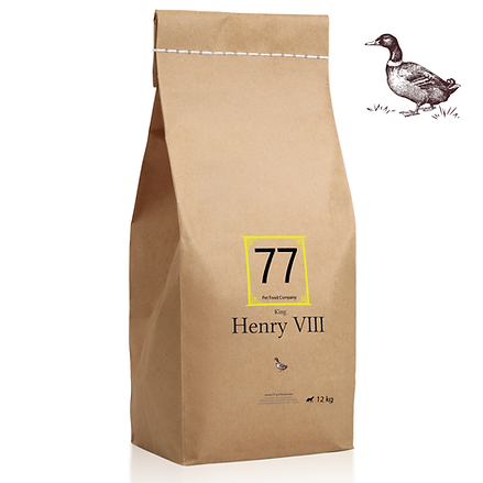 Henry VIII z kaczką 12kg