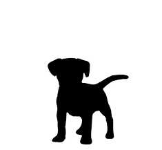 puppy silhouette_edited.png