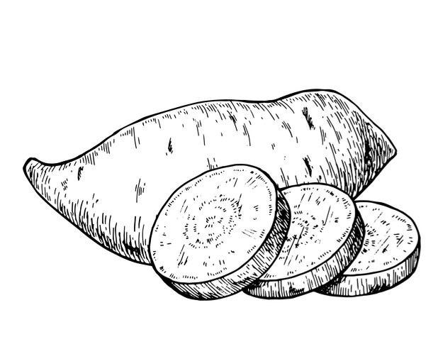 sweet potato2_edited.jpg
