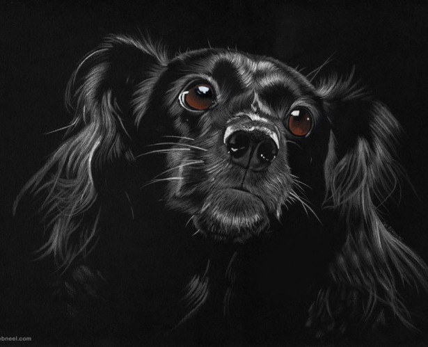 4-dog-drawing-by-ilojleen.preview.jpg