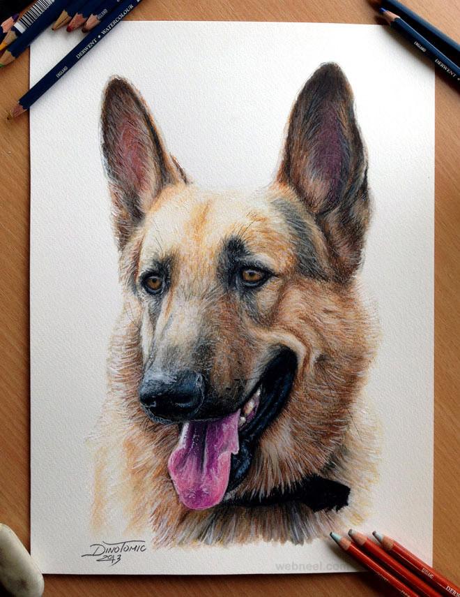 5-dog-drawings-animals-dinotomic.jpg