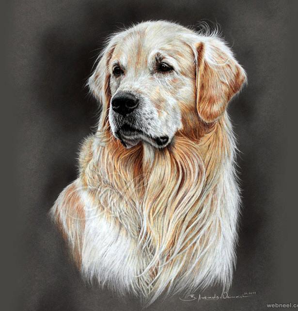 19-dogo-color-pencil-drawing-atelieraren