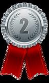 medal%20ribbon%20SILVER_edited.png