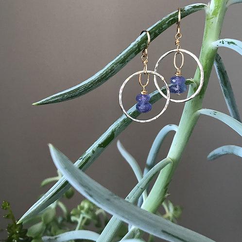 Tanzanite Flight Earrings