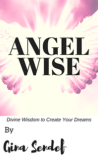 Angel Wise cover.PNG