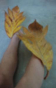 Coloured leaf 2 til web.jpg