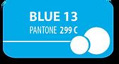 blue 13 button.png