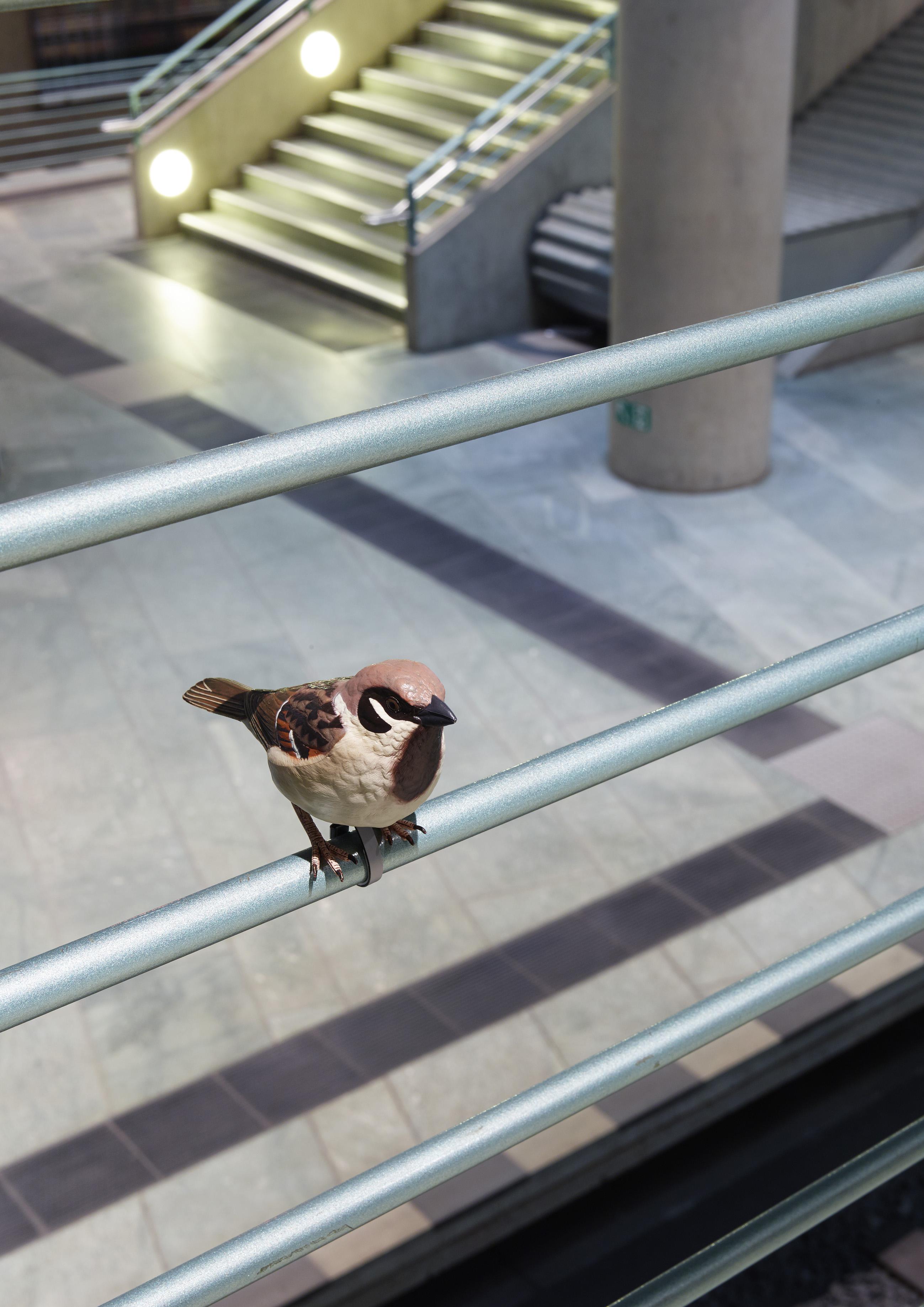 U-Bahnhof Bundestag_Momentum_Mio Chareteau_Foto Michel Bonvin