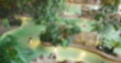 P1010595-recadrage-compressé-718x533.jpg