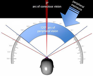 Our arc of conscious vision is only 3° (out of 120°). The peripheral vision processes random thanks to our auto-pilot system
