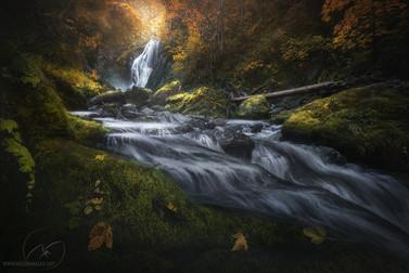 Fall in love / waterfall