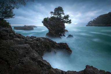 Poseidon garden / Italy / Liguria / Cinque Terre
