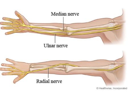 Nerve Glides