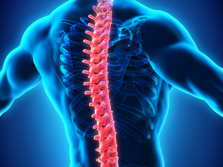 Occupational Therapy and Spinal Cord Injury