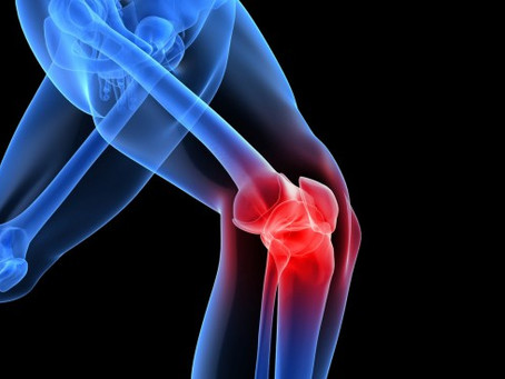 Importance of PT in Knee Injury Recovery