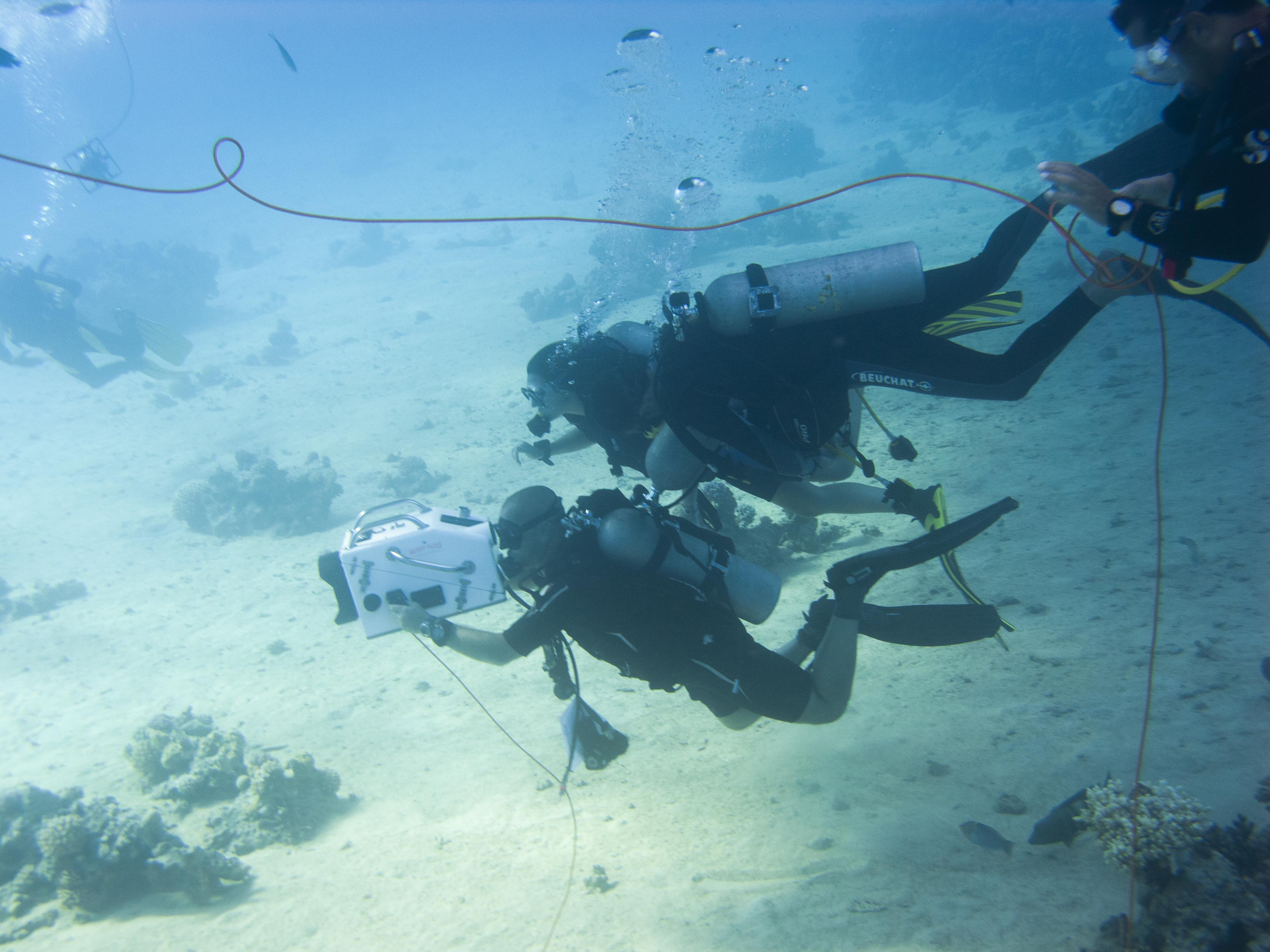 FP filming underwater