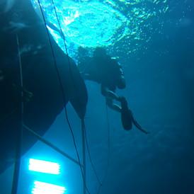underwater marine6 uw studio 2017-12-17