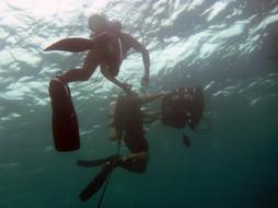 underwater warning uw fp uw 3d housing o