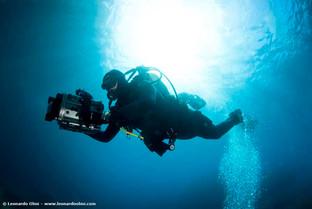 uw underwater sardinia uw FPUWamphibicoH