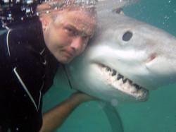 FP with shark