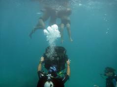 underwater warning uw fp 3d housing acto