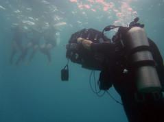 underwater warning uw fp uw 3753.JPG