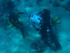 uw underwaterbackstageuw FP uw egypt 16m