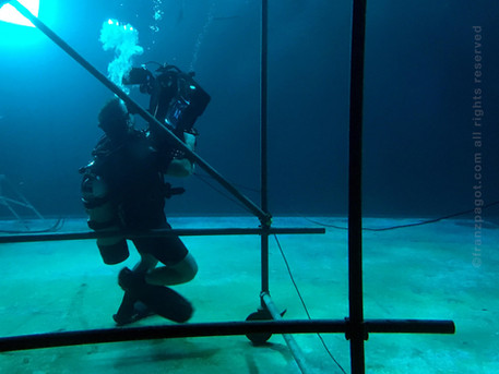 underwater litepanel IMG_0837.jpg