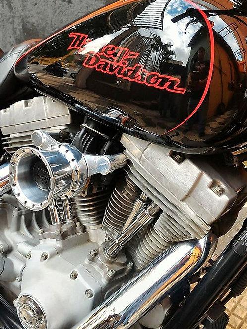 Filtro de ar para Harley Davidson Dyna e Softail modelo INTAKE II com suporte.