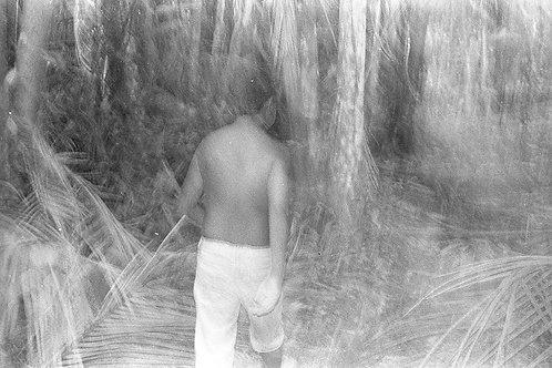 Combu - 33 x 23 cm - por Laura Castro
