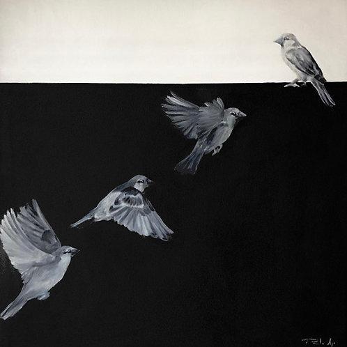 A Fluidez da Memória - 70 x 72 cm - por Paulo Agi