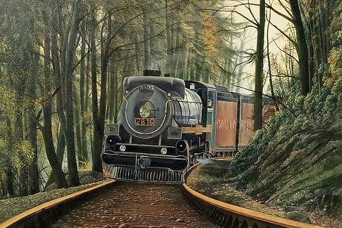 Viagem do Contestado - 120 x 100 cm - por Ivo