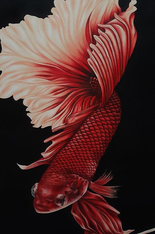 Peixe - 42 x 30 cm - por Gisele Oliveira