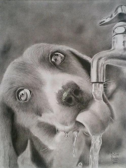 Hora de beber água -31 x 24 cm - por Gustavo Pauluk