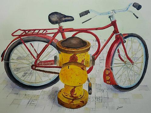 Barra Circular - 50 x 60 cm - por Luciano Costa