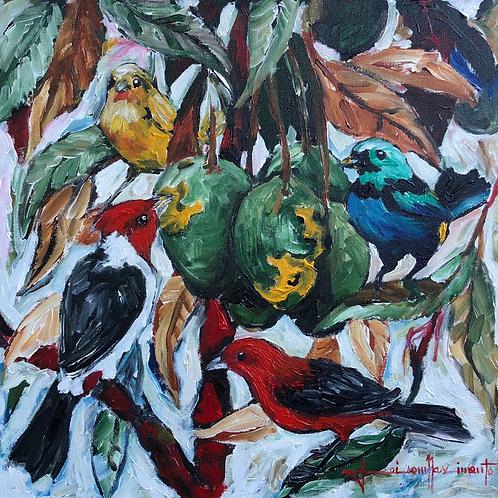 Pássaros domeu Brasil - 50 x 50 cm - por Jeisom Nascimento
