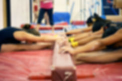 gymback3.jpg