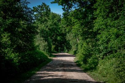 kleiner Feldweg entlang am Stall