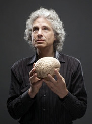 Stephen Pinker on why AI is possible