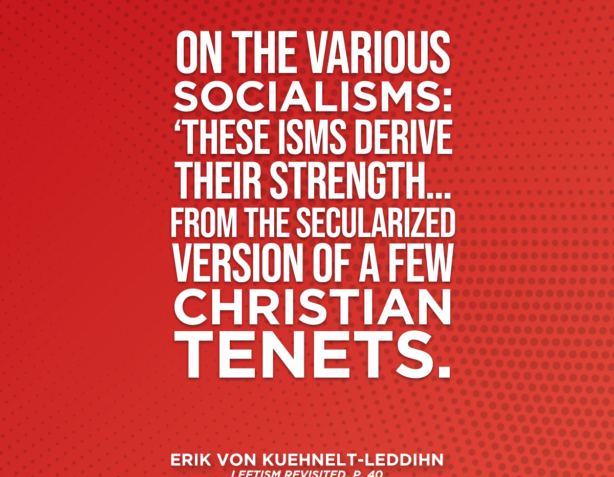 TAS_SOCIALISM_LEDDIHN2.png