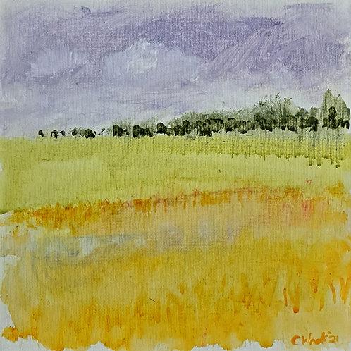 Lemon Field