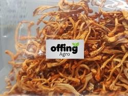 Offing Agro