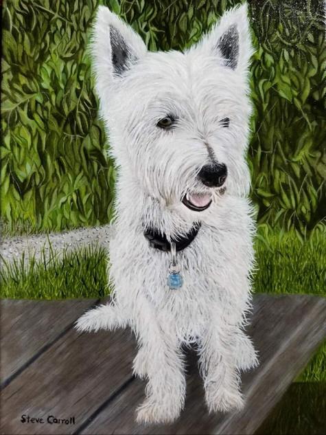 MacDuff (Duffy)