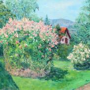 Jardin du voisin
