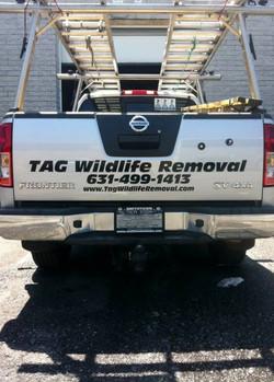 TAG Wildlife Removal